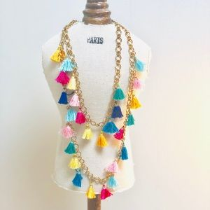 Jewelry - NWOT Multicolored tassel necklace colorful and fun